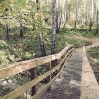 Осень :: Анна Шелест