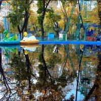 Отражение осени :: оксана косатенко