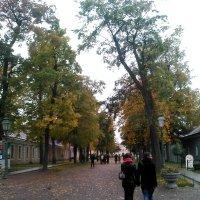 Осенние мотивы. (Октябрь 2017 год, Петропавловская крепость). :: Светлана Калмыкова