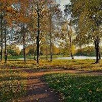 В поиске Золотой осени... :: Sergey Gordoff