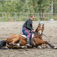 С конём :: Nn semonov_nn