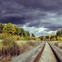 уж небо осенью дышало... :: Сергей Бойцов