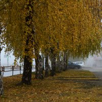 Осень в Городе :: Андрей + Ирина Степановы