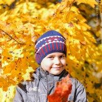 осень :: Надежда Орёл