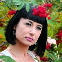 Рябина красная. :: Александр Бабаев