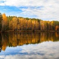 Золотая осень :: Вячеслав Васильевич Болякин