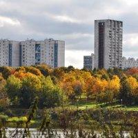 Городские контрасты :: Анатолий Колосов