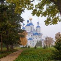 Грусть октября :: Валерий Горбунов