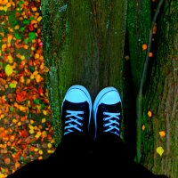 Осень... :: Роман Никитин