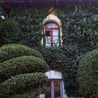 райское окно :: Виктор Перякин