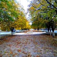 Осенняя аллея :: Татьяна Королёва