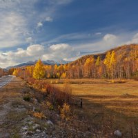 Дорога в золотую осень :: Анатолий Иргл