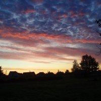 Rytas / Morning :: silvestras gaiziunas gaiziunas