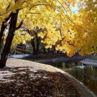 Осень в Самаре :: Александр Алексеев