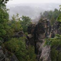 Эльбские Песчаниковые горы :: Алёна Савина