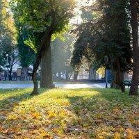 Осень :: Александр Крупский