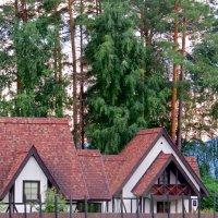Отель :: Вера Щукина