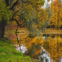 краски осени :: Кирилл