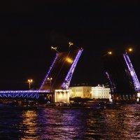 Дворцовый мост :: Aнна Зарубина