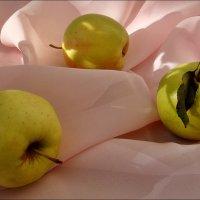 Яблочки :: Нина Корешкова
