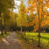 Осень в Дубне. :: Виктор Евстратов