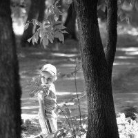 Когда деревья были большими. :: Валерия  Полещикова