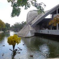Осенний архитектурный пейзаж!... :: Алекс Аро Аро