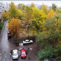 Осенние краски. :: Роланд Дубровский