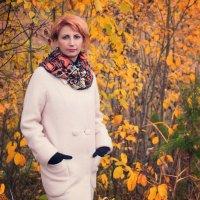 Осень в городе :: Наталья Копылова