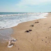 Следы на песке :: Александр Орлов