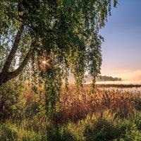 утром на озере :: Василий И