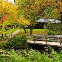 Осенью в Японском саду! :: Николай Кондаков