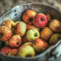 Яблочки! :: Натали Пам