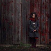 Красное на сером :: Юлия Дурова