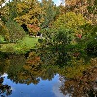 Осень в Японском саду :: Леонид Иванчук