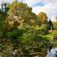 Осенний пруд Японского сада :: Леонид Иванчук