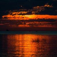 Закат на Финском заливе :: Алёнка Шапран