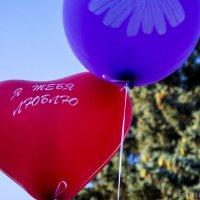 Я люблю тебя... :: isanit Sergey Breus