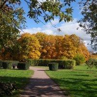 Осень в Коломенском :: Nikanor