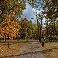 Прогулки по осени. :: Надежда Парфенова