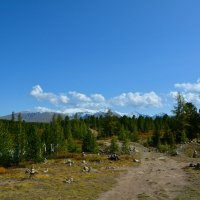На вершине Улаганского перевала. :: Валерий Медведев