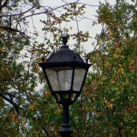 Фонарь в осени :: Наталья (D.Nat@lia)