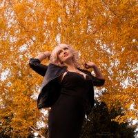 Золотая осень :: Anastasia Stella