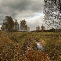 Осень, не унылая пора 7 :: Сергей Жуков