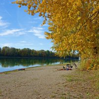 Стоит прекрасный солнечный октябрь... :: Galina Dzubina