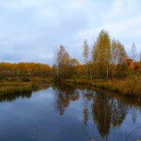 краски октября... :: александр дмитриев