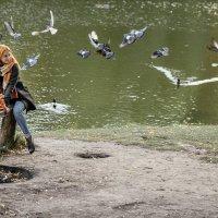 Птицы :: Вячеслав