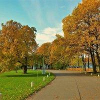 Золотая аллея... :: Sergey Gordoff