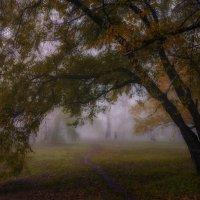 Осенний туман. :: Виктор Иванович