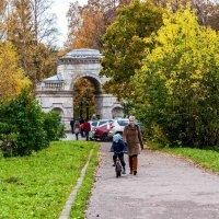 Осень. :: Александр Лейкум